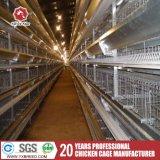 El equipo de la granja de aves de corral de la batería de pollo a la capa