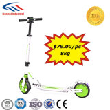 電気二重中断移動性のスクーター