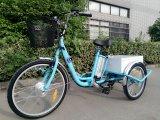 2018 연장자를 위한 새로운 거물 전기 기동성 Trike 세발자전거