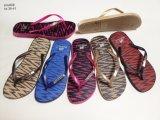 El deslizador de las mujeres de la manera calza los zapatos de los fracasos de tirón (YG808-1)