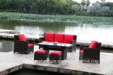 Mobilia esterna stabilita della nuova di disegno del rattan del PE di HD Tabella del sofà
