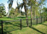 Jardin noir de dessus plat clôturant avec le GV et l'ISO9001