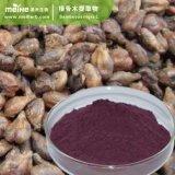 100% натуральные Elderberry извлечения
