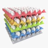 カスタマイズされたプラスチック注入の卵の皿型