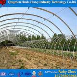 Asien-Art-multi Überspannungs-grünes Polyhaus für Tomate-Erdbeeren