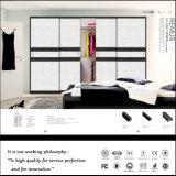 現代デザイン引き戸のワードローブ(ZHUV)