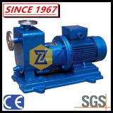Magnetische Pomp Van uitstekende kwaliteit van de Instructie van het Roestvrij staal van China de Horizontale Zelf
