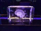 De Laser die van hersenen 3D Kubus van het Kristal voor Medische Herinnering graveren