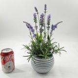De kunstmatige Decoratie van de Bonsai van het Cement van de Lavendel