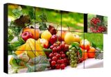 3,5 mm de 46 pulgadas Full HD 1080P 2X2 3X3 LED de 4X4 Video Wall