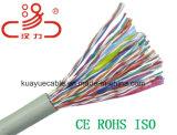 Le fabricant a fait tomber sur le fil d'accès primaire RNIS PE isolés de Air Core câbles/Câble ordinateur/le câble de données/Câble de communication/audio/connecteur de câble