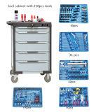 Hilfsmittel 258PCS mit Hilfsmittel-Schrank