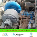 카플란 발전소 100kw를 위한 수력 전기 발전기