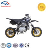 50cc, Four Stroke AUTOMATIC clutch Dirt Bike