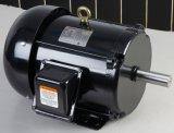 NEMA мотор NEMA AC наградного эффективности приложения полно электрический