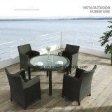 Jardim ao ar livre Uv-Resistente da mobília que janta a cadeira do pátio e a tabela ajustadas (Yta020-1&Ytd322_