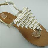 Los últimos accesorios de lujo del zapato de la sandalia de las señoras