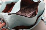 Nuova borsa delle signore di modo (F62334)