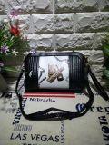 方法昇進の小さい女性ショルダー・バッグニースデザイナー袋(WDL0096)