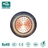 IEC60502 standard en aluminium avec isolation XLPE 6/10kv sur le fil blindé Câble d'alimentation 11kv Single Core câble 630mm en aluminium