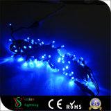 LED azul de 24V Luz String com cabo de PVC