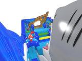 Seaworldの膨脹可能な二重車線のスリップの乾燥したスライドChsl1133