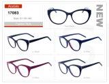 고전적인 디자인 모형 도매 주식 소액 주문 아세테이트 안경알