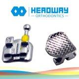 Producto dental de la calidad del progreso, corchete ortodóntico con el certificado del Ce FDA