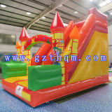 Rainforest Commercial Grade Slide Water Slide avec grande piscine