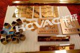 Oro dell'acciaio inossidabile di Hcvac, Rosegold, il nero, macchina blu della metallizzazione sotto vuoto di metalizzazione PVD