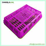 ひよこおよびアヒルのための方法高品質の輸送のプラスティック容器