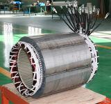 2年の保証の純粋な銅320kw/400kVAの交流発電機(JDG314F)