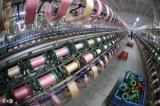 Резьба для связанного износа, тенниска высокой цепкости полиэфира, Sportswear, джинсыы, джинсовая ткань, куртка,