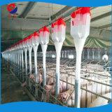 中国の専門のブタの供給のサイロのブタの挿入ライン