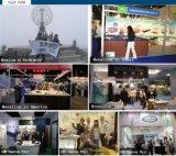 Badkuip van de Branding van het Ontwerp van de pinda de Tweepersoons met Rok (m-2008)