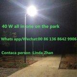 Fabricante de la luz solar calle Venta caliente con 12 V 40 W LED de batería de litio Levante po 4 LED Solar