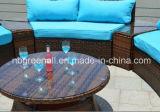 半円形の藤の屋外の部門別の庭の枝編み細工品の家具