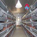 Nouvelle couche de type de système de la cage de poulet