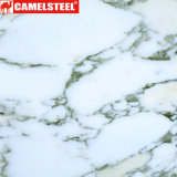 山東からの床の装飾のためのカスタマイズされた3D大理石プリントPPGI