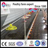Approvisionnement en alimentations de grilleur/alimentation de poulet
