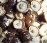 최고 전체에 있는 질에 의하여 통조림으로 만들어지는 표고 버섯
