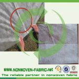 Tela não tecida dos PP com protetor Anti-UV para a tampa da agricultura