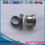 Qualität der mechanischen Dichtung für Grundfos Pumpe 65mm