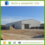 L'ampia luce ha prefabbricato la tettoia chiara della costruzione della Camera di blocco per grafici d'acciaio