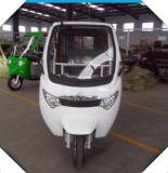 電気Tuk Tukか乗客の三輪車または自動人力車