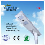 40W Integretde LED solarly Street Light with poles