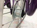 貨物バイクのカートンの自転車3の車輪の三輪車の人力車のベルト