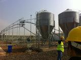 Casa de galinha pré-fabricada da construção de aço