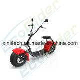 Scooter électrique de Harley de gros pneu de Citycoco de deux roues avec l'état de Coc