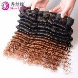 In het groot Ruwe Remy 100 de Diepe Hete Verkoop van het Menselijke Haar van het Haar Ombre van de Golf 1b/30 Vietnamese Maagdelijke